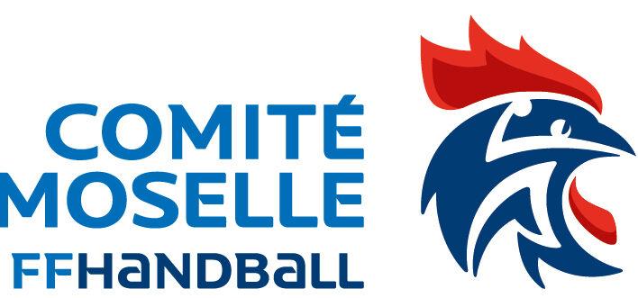 Handball Logo Club Vigy-722x331 v2021.jpg