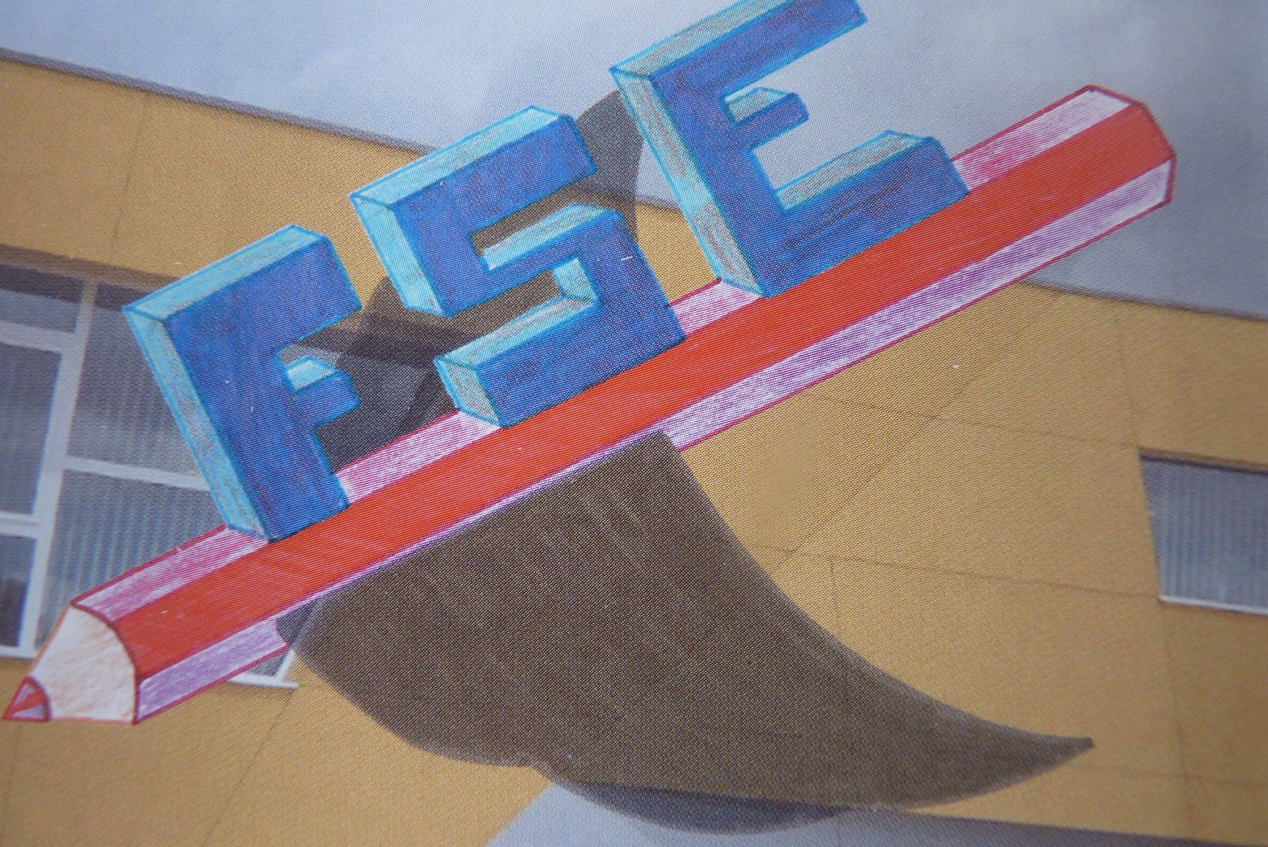 FSE Logo 2.jpg